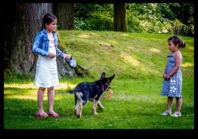 Kiki the dog Hitch and Madelief