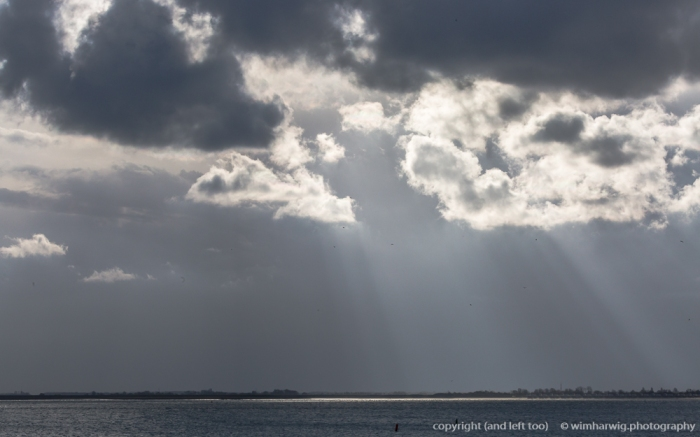 "this morning the light was spectacular ""Zeeuws"" …"