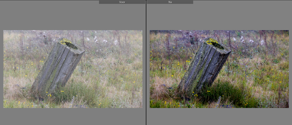 Before and after postproduction in Lightroom.